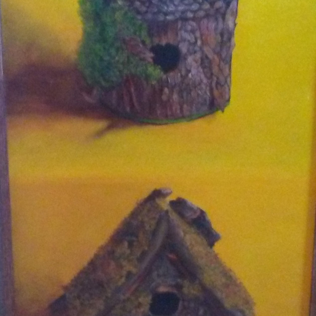 2 Birdhouses