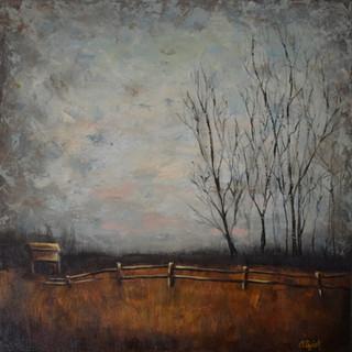 The Mists at Marymoor: Dog Park Lot B