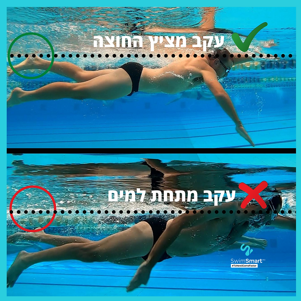 השוואת שני שחיינים לפי גובה הרגליים ביחס לפני המים