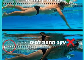 2 עקרונות היסוד בשחייה