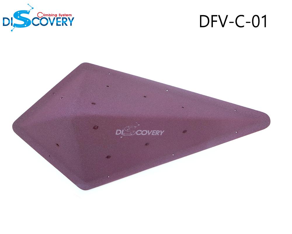 DFV-C-01_2