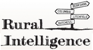 rural-intelligence-logo-300x161.13712493