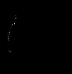 Saisonnier_Logo_Black_edited.png