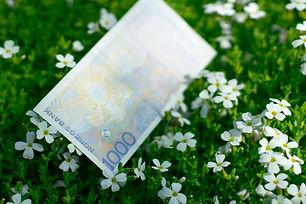 """""""Penger kan skape grønne enger"""""""