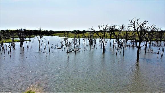 PALKY LAKE.JPG