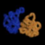 Biomol NMR paper.png