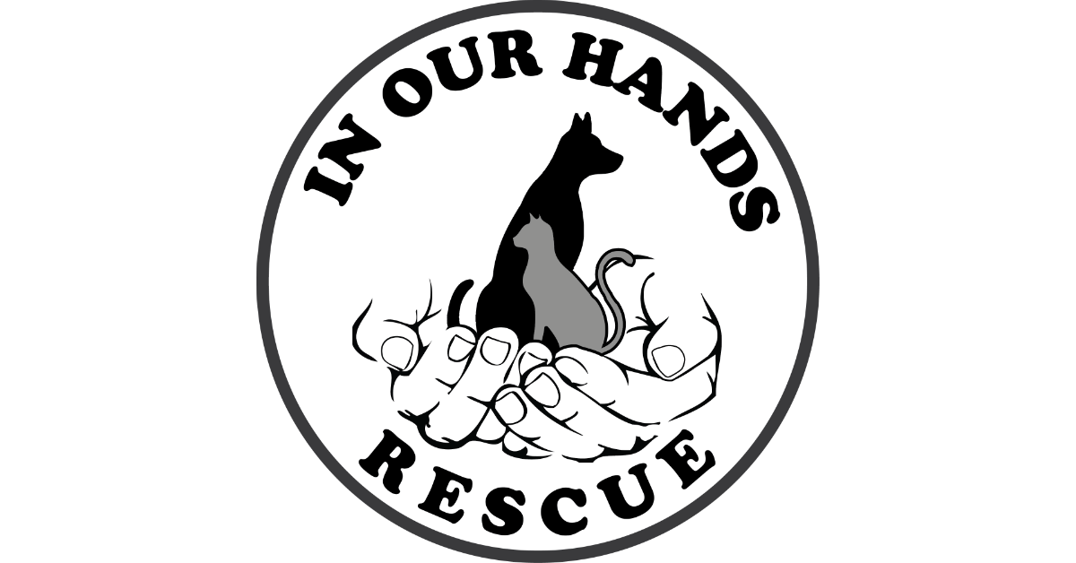 In Our Hands Rescue - NYC