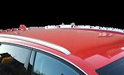 Dachträger integrierte Reling