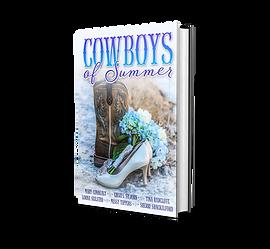 3D Cowboys of Summer.png