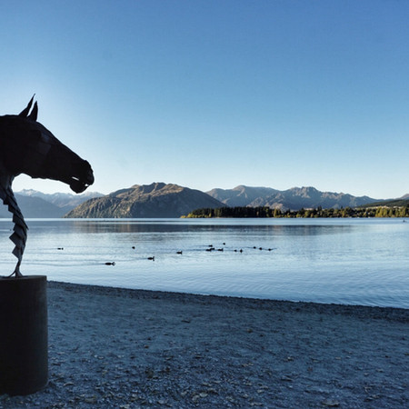 Plated horse head, Wanaka NZ