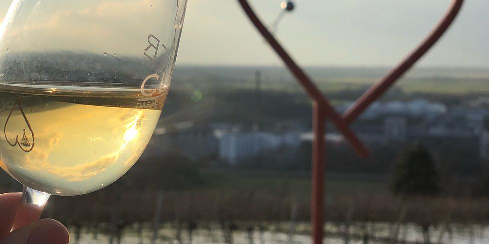 Alkoholfreie Wein-Degustation #3 | Weingut Leitz