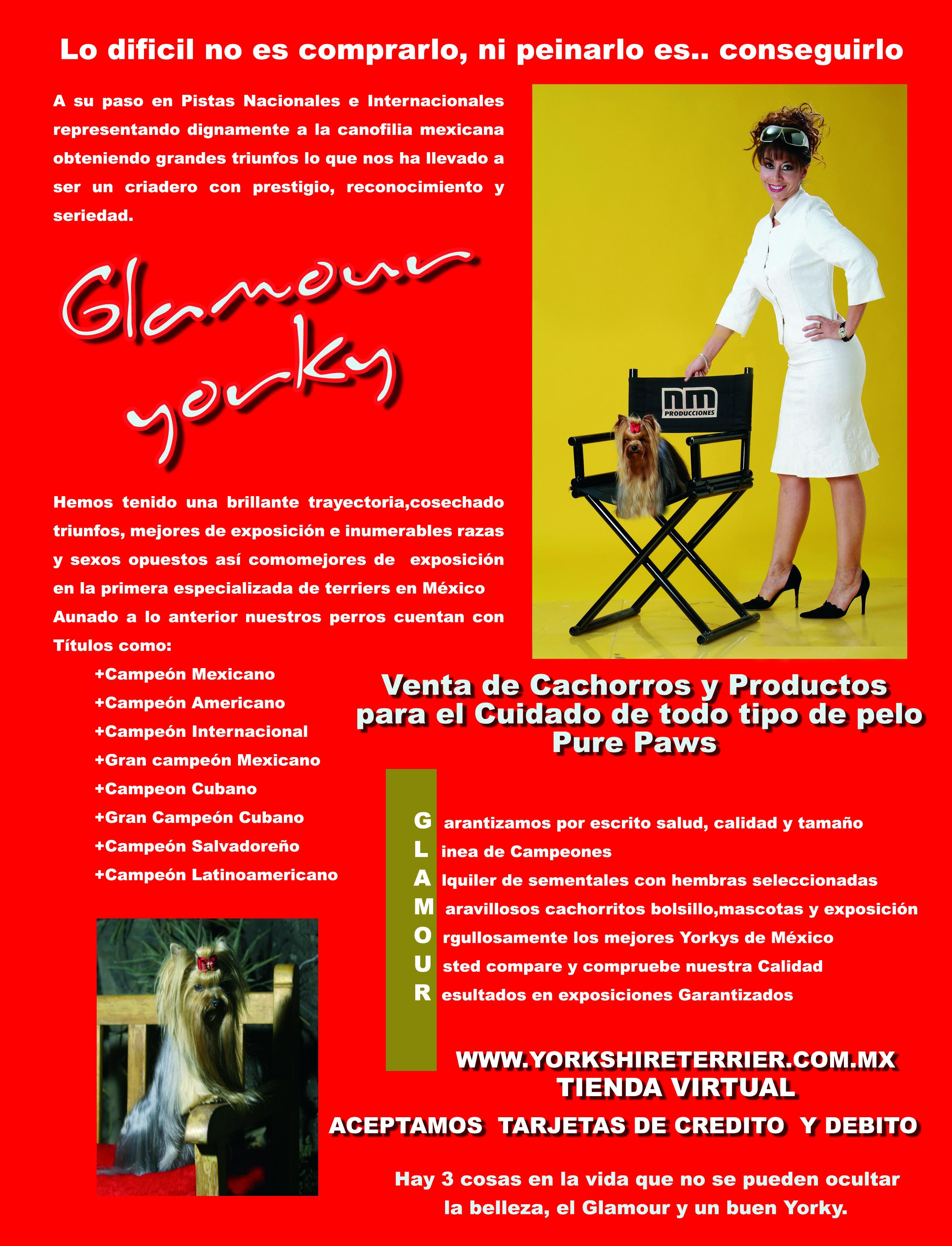 folleto mundiaL A.jpg