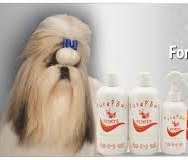 FORTE KIT 3 PRODUCTOS