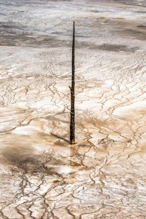 Yellowstone_Springs-25.jpg