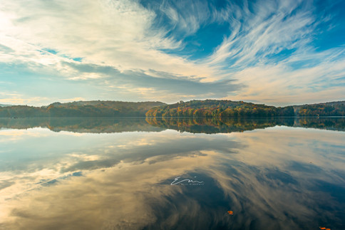 Collection_Reflection-1.jpg