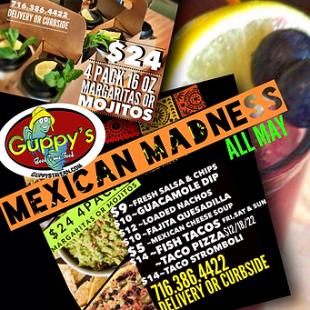 GUPPYS MEXICAN MADNESS.PNG