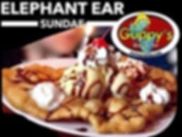 Elephant Ear at Guppys.jpg