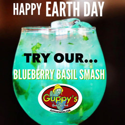blueberry basil smash guppys