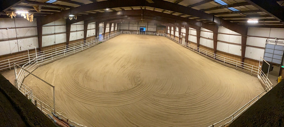 indoor arena view