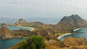 Flores: The Land of Dragons
