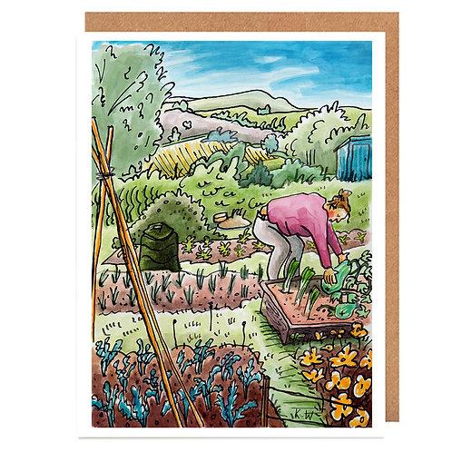 Marrow harvest card