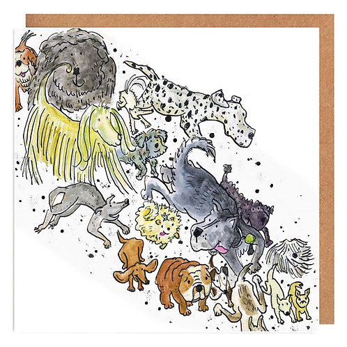 Pack of pooches card