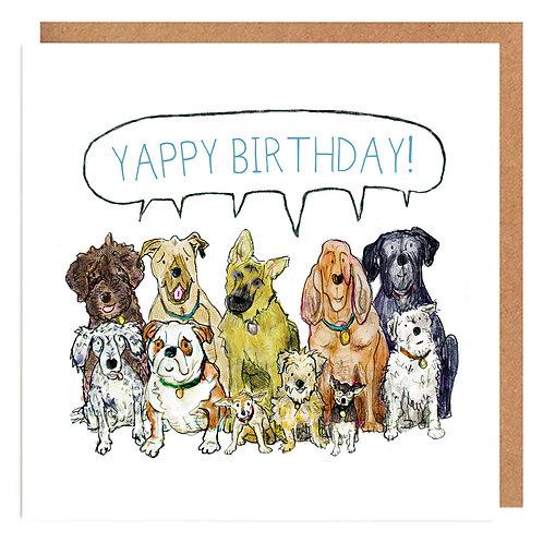 Yappy Birthday dogs card