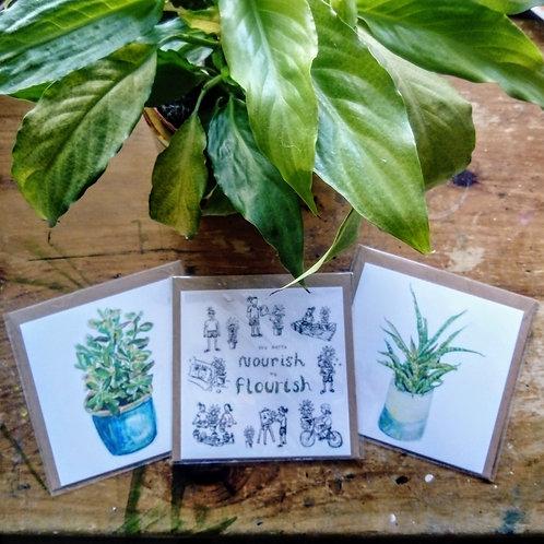House plant cards (blank)