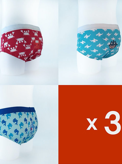 Pack de 3 Calzoncillos Briefs