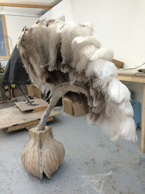 Ostrig wing model