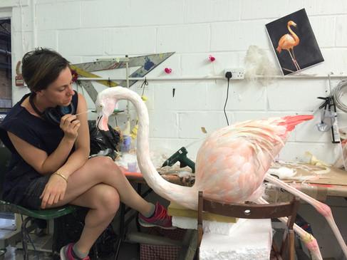 Gucci flamingos. Models