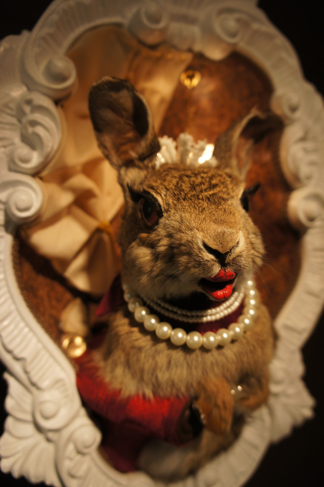 Detail of Anthropomorphized taxidermy rabbit