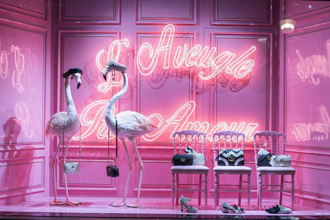 Flamingos For Gucci