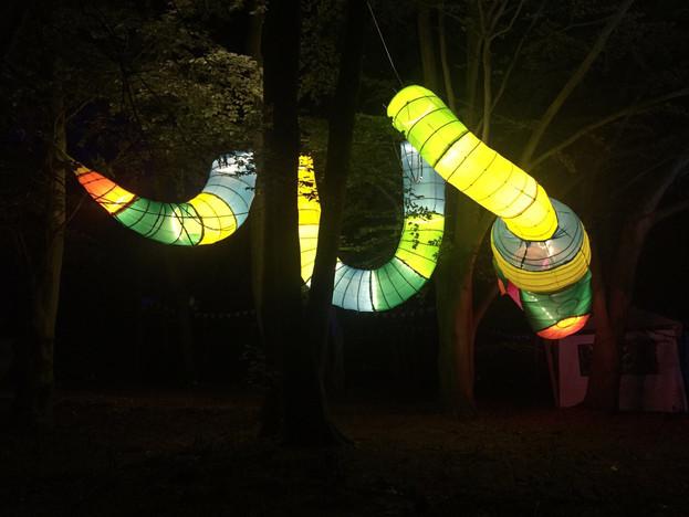Tree Snake installation for Noisely Festival