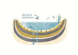 Dew Pond Diagram