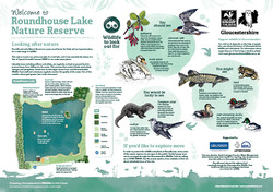 Roundhouse Lake Nature Reserve