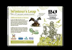 Wintour's Leap