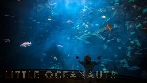 Little Oceanauts