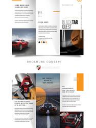 BTQ Brochure Proposal