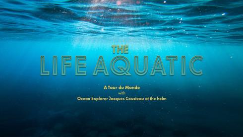 Life Aquatic Opener C