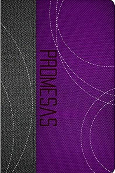 BIBLIA DE PROMESAS ED. JOVENES DOS TONOS GRIS/PURPURA