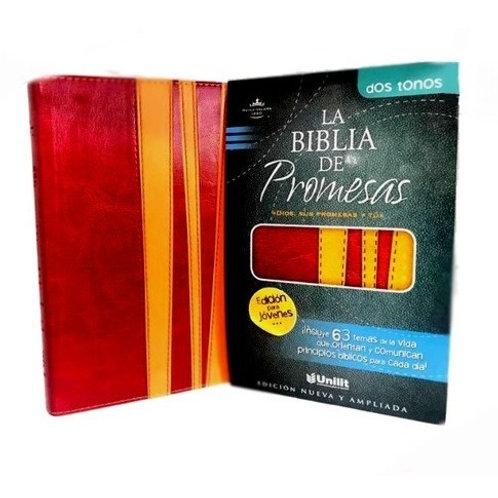 BIBLIA DE PROMESAS PARA JOVENES 491013 TD