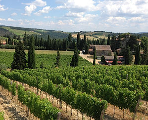 Tuscany wine tour, food, culture and art retreat