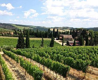 Sunny day in Tuscany, Chianti Classico,