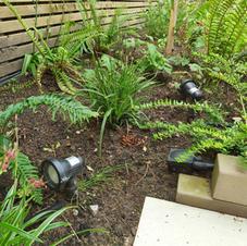 Garden lighting scheme