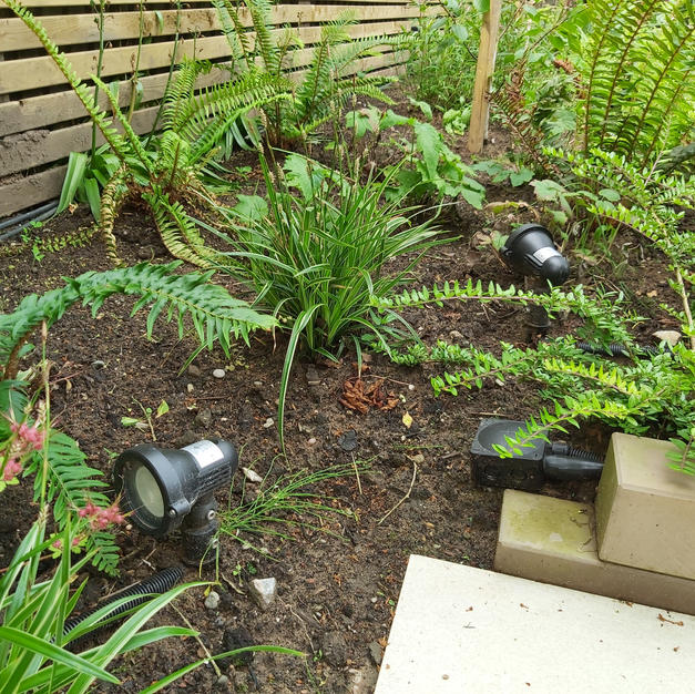 Garden lighting scheme