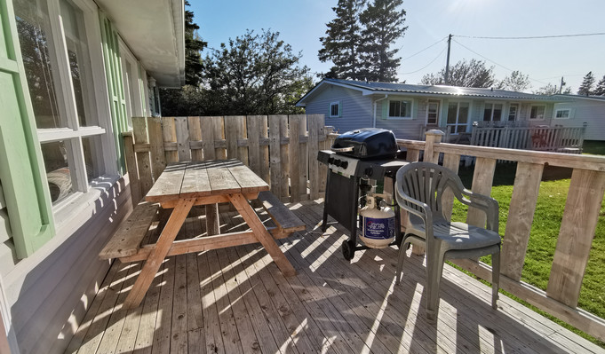 Deck with bbq and picnic table