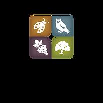 vineyard-team-logo-_2013-01.png