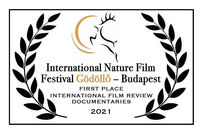 Godollo Hungary Festival Award 2021-low res.jpg