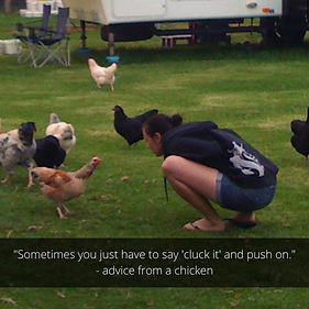 Advice from a chicken.png